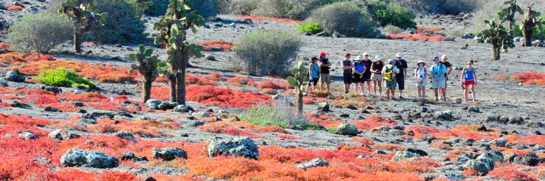 Galapagos-Experience-14