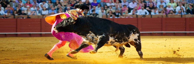 SPAIN4