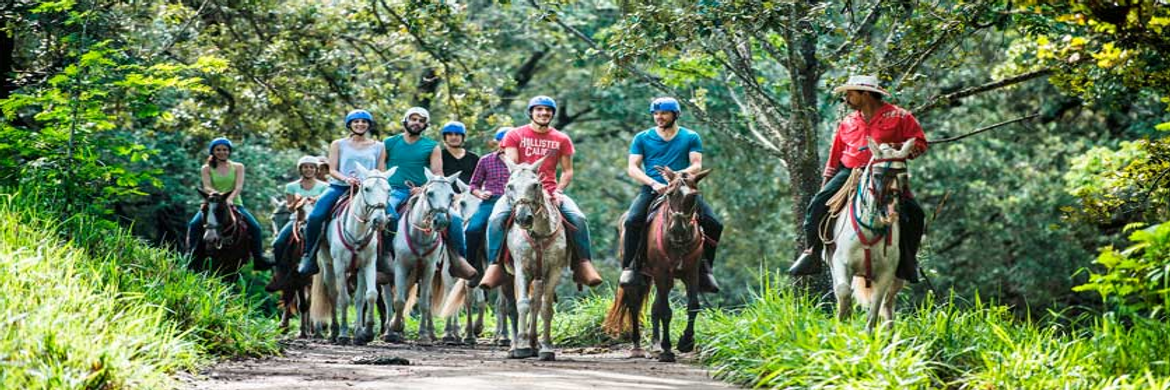 experience-luxury-family-horseback1